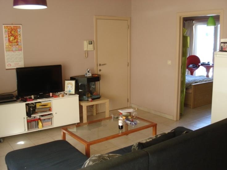 Appartement à louerà Audenarde auprix de 490€ - (5653720)