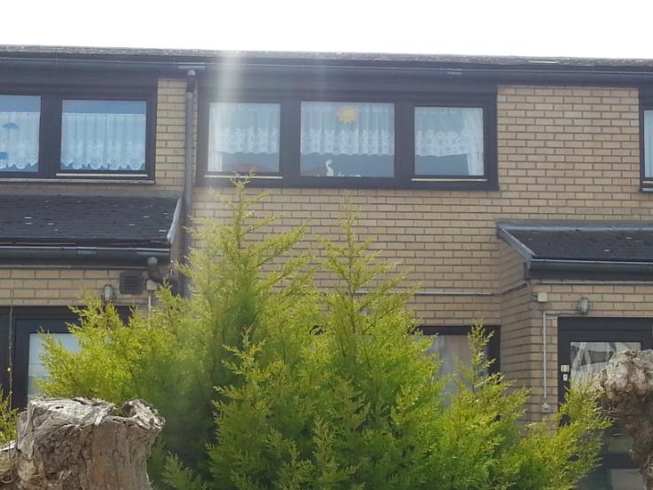 Belgique : vakantiewoning- Appartement voor0€ - (5659822)