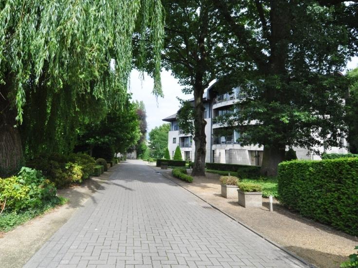 Appartement de 3façades à louerà Turnhout auprix de 850€ - (6116969)
