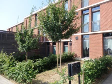 Appartement van 1gevel te huurte Marcinelle voor615 € -(6488900)