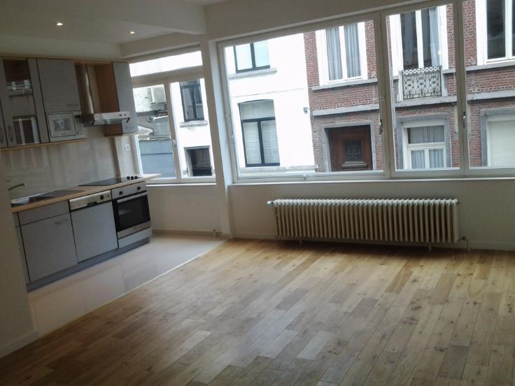 Appartement de 1façade à louerà Ixelles auprix de 650€ - (6545732)