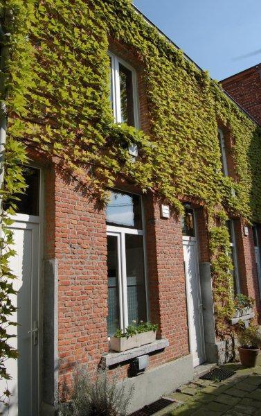 Appartement van 2gevels te huurte Anvers 6voor 530 €- (6554150)