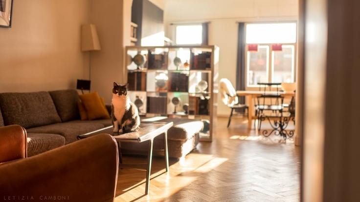 Appartement de 2façades à louerà Laeken auprix de 820€ - (6568181)