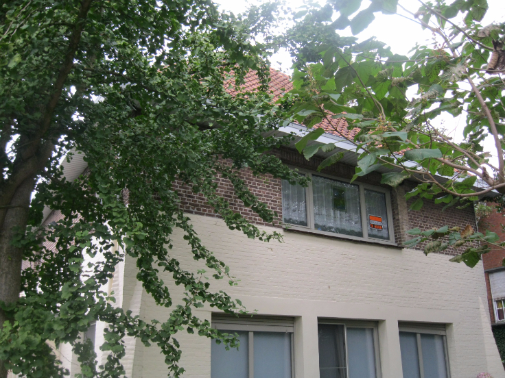 Appartement van 4gevels te huurte Brecht voor640 € -(6635235)