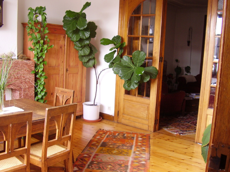 Appartement van 2gevels te huurte Etterbeek voor795 € -(6635894)